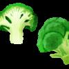 ブロッコリーを食べると得られる健康効果とは